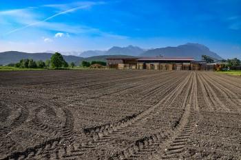 Cara Bisnis Jual Tanah Yang Menguntungkan Bagi Kalangan Muda