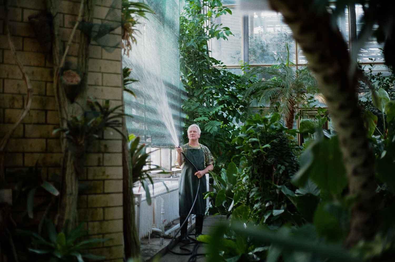 Inspirasi Taman Belakang Rumah Menggunakan Konsep Indoor