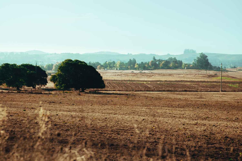 Tanah Kosong