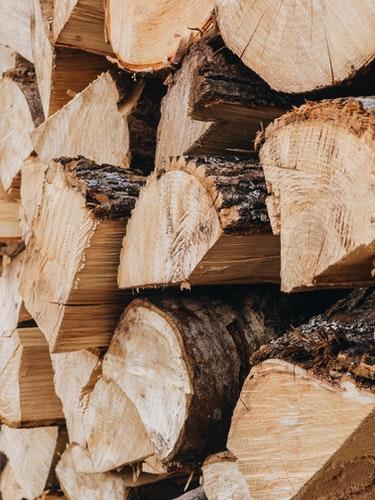 Jenis kayu jati ini paling cocok dibuat sebagai perabotan maupun rumah